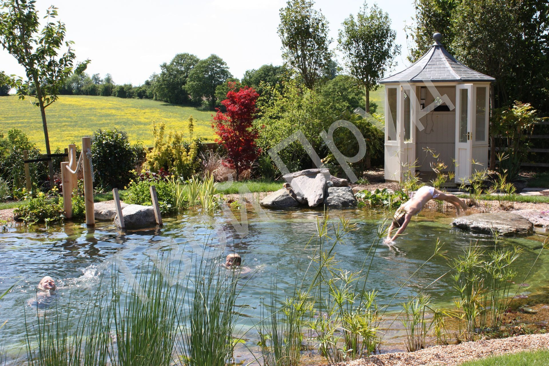 copy-of-swimming-pond-herts